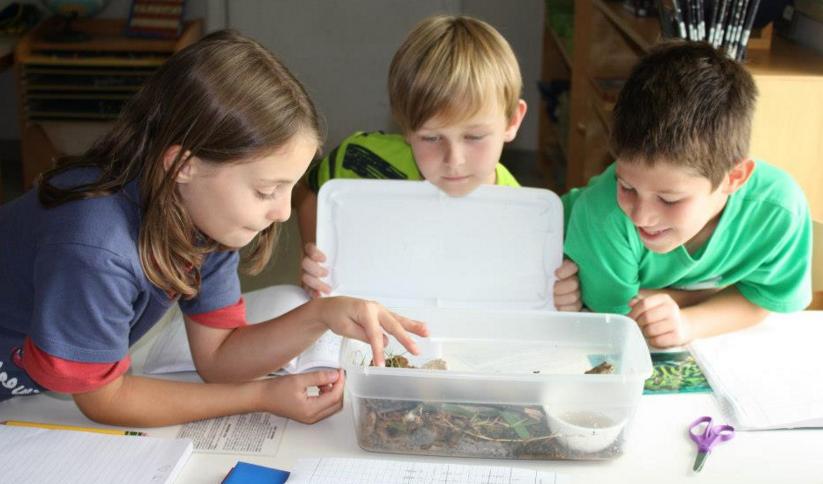 12 points-clés de la méthode Montessori