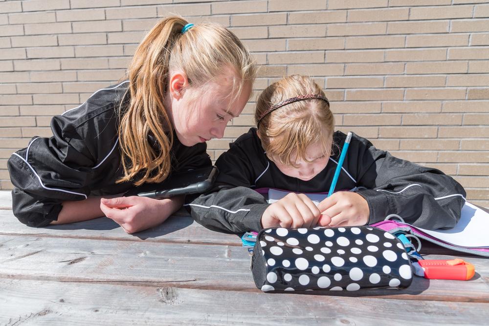 Les solutions d'aide aux devoirs au Canada